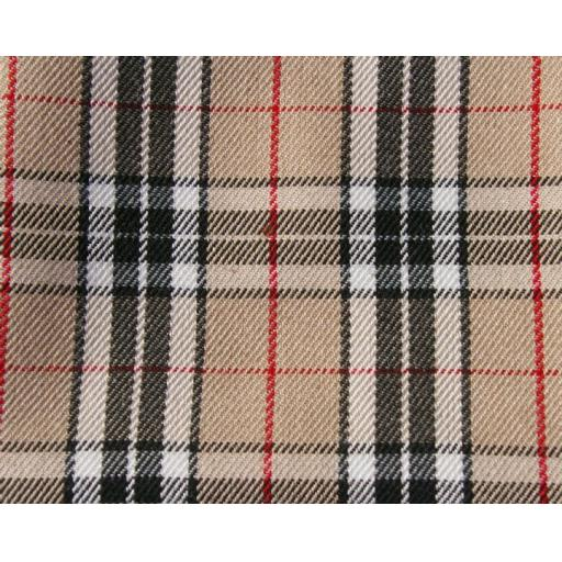 Burberry Plaid