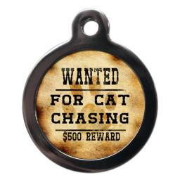 Wanted For Cat Chasing