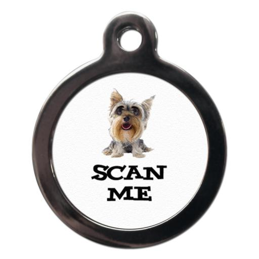 Cute Scan Me Yorkie