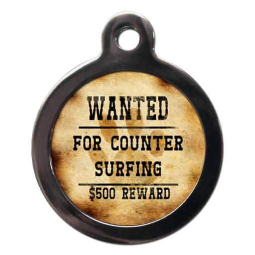 Wanted For Counter Surfing
