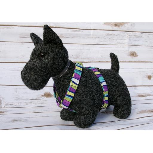 Piccadilly Circles Harness