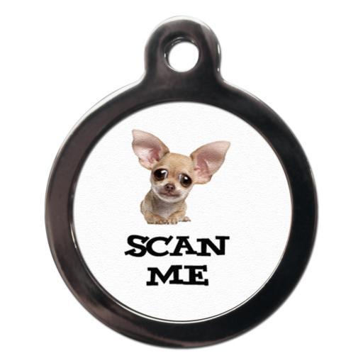 Scan Me Chihuahua