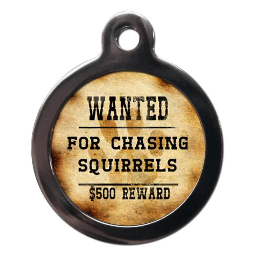 Wanted For Chasing Squirrels