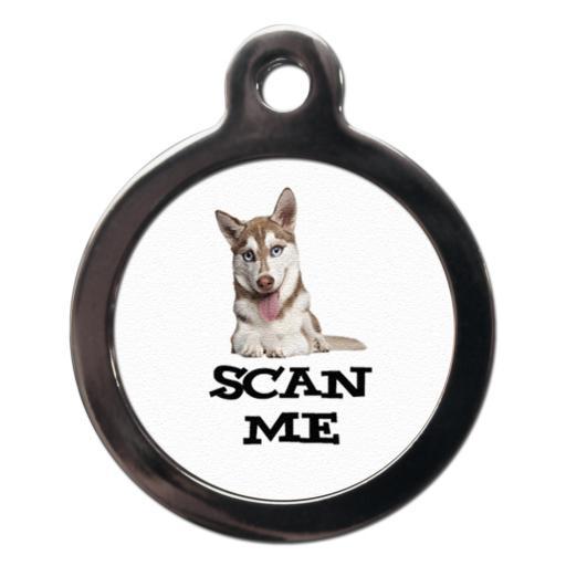 Scan Me Siberian Husky