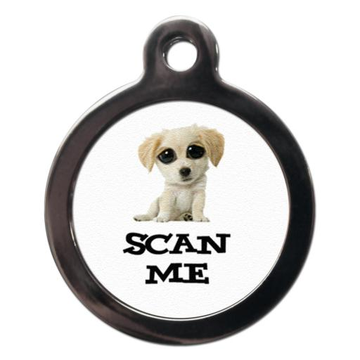 Scan Me Labrador