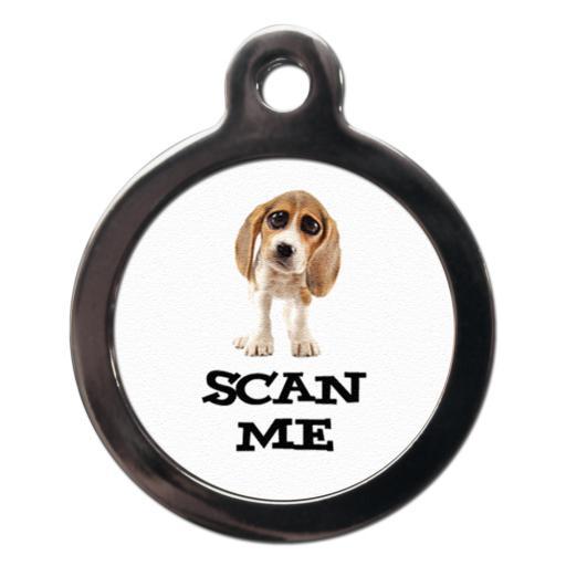 Scan Me Beagle